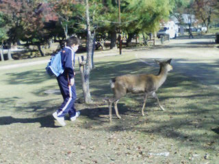 kyokuto-jh-2008-11-14T11_29_53-1.jpg